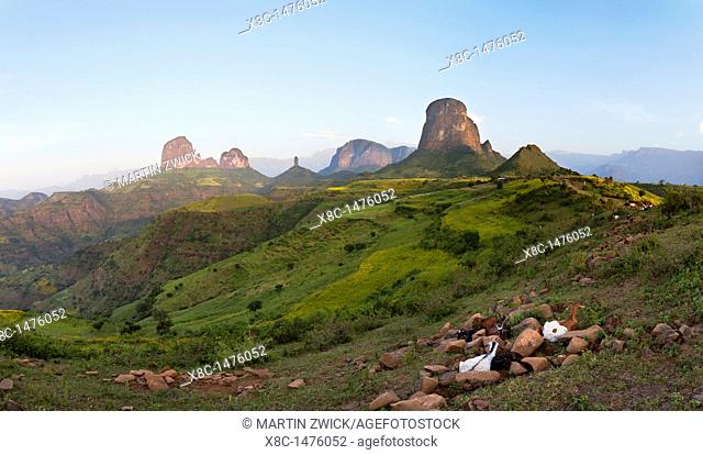 Panorama of a landscape of the buttes of Mulit near the Escarpment of the Simien Mountains at about 2000m during the end of the rainy season close to the Simien...