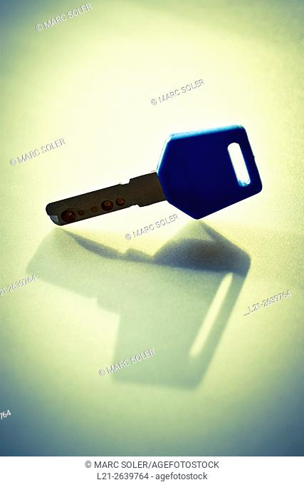 Metal key with plastic holder alone
