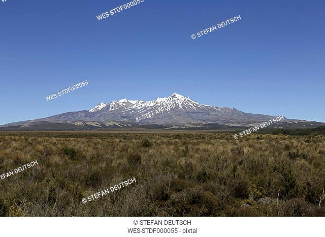 New Zealand, view to Mount Ruapehu
