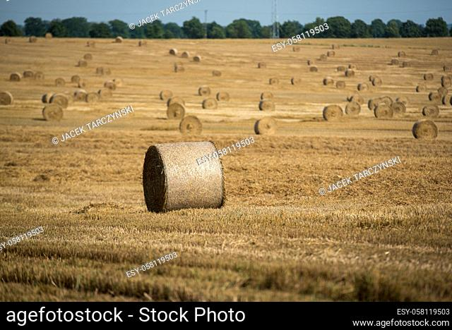 haystack ont the farmfield after harvest