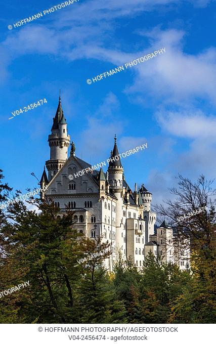 Famous Neuschwanstein Castle (New Swanstone Castle) in winter, Hohenschwangau, Bavaria, Germany, Europe