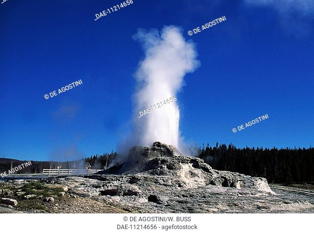 Geyser, Yellowstone National Park (UNESCO World Heritage List, 1978), Wyoming, United States of America