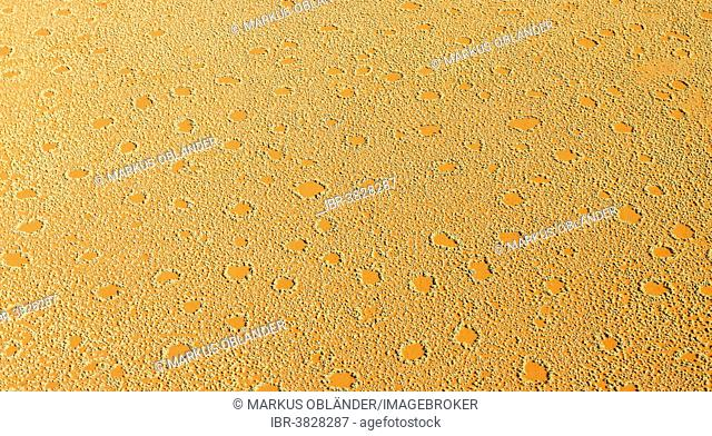 Aerial view, fairy circles, Wolwedans, NamibRand Nature Reserve, Namibia