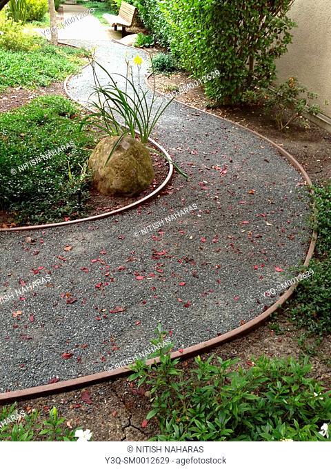 Curved gravel path strewn with leaves through a garden