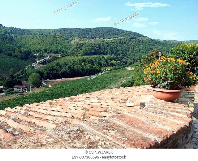 Old roof of the Tuscan villa amongst vineyards and an olive groves