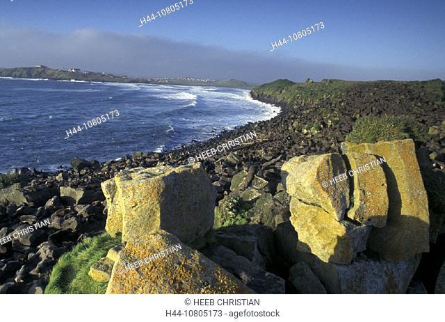Alaska, Callorhinus ursinus, Fur Seal Colony, Pribilof Islands, St. Paul Island, USA, America, United States, seal