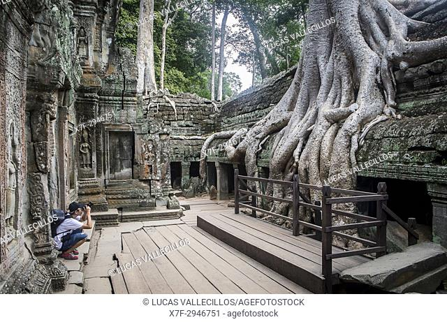 Ta Prohm temple, Angkor Archaeological Park, Siem Reap, Cambodia