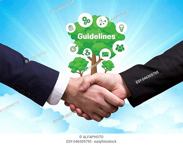 Technology, the Internet, business and network concept. Businessmen shake hands: Guidelines