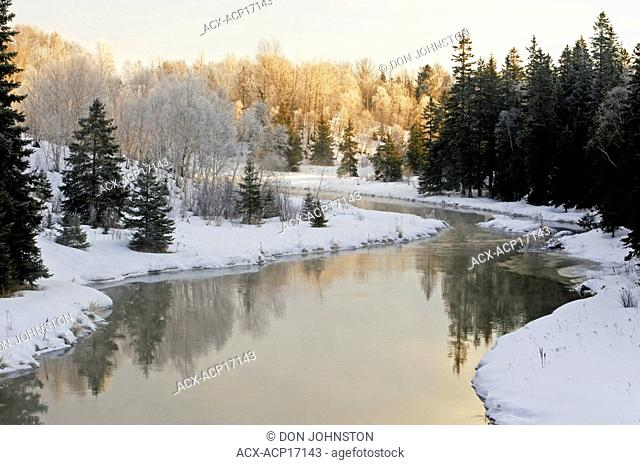 Open water of Junction Creek with shoreline spruces and birches, Lively, Ontario, Canada