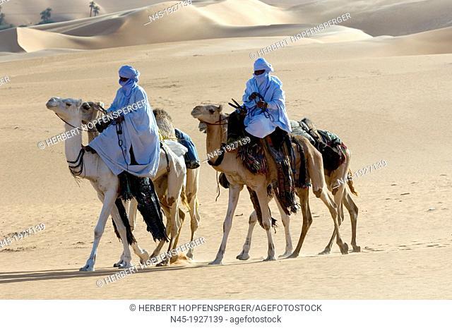 Tuaregs riding Camels; Tuareg Caravan; Libyan Arab Jamahiriya; Libyan Desert
