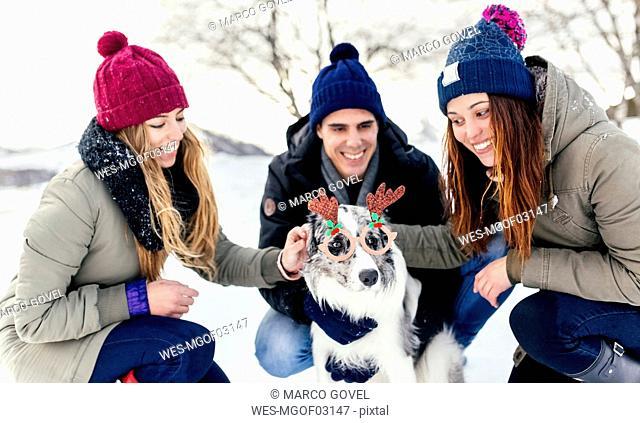 Three friends having fun their border collie in the snow