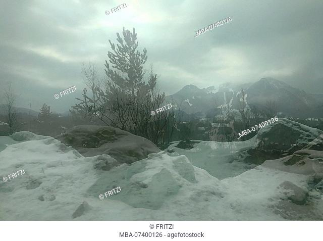 Window, view from the window, view, Bavaria, Germany, double exposure, fir, rocks
