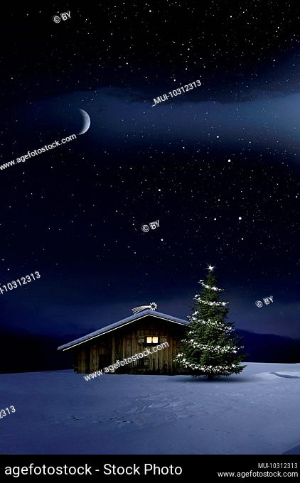 Shining, glowing Christmas tree in the snow near a wooden hut with a glowing window [M]