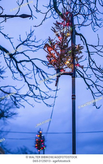 SA, New England, Cape Ann, Massachusetts, Rockport, small Christmas Tree