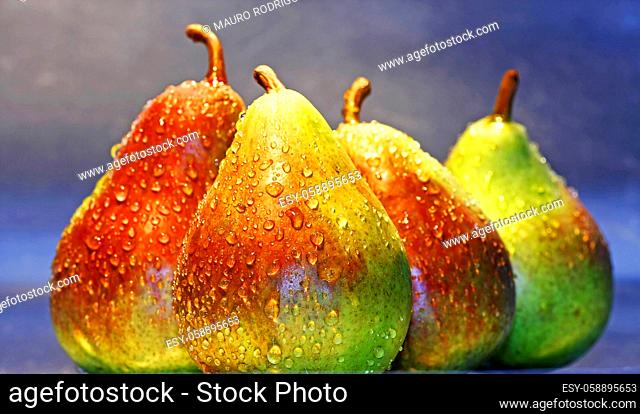 Bunch of wet juicy pears aligned on a gray background