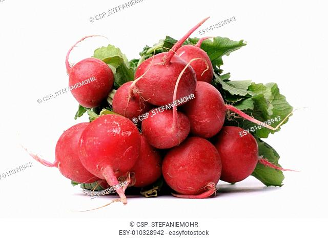 Bundle of little red radish over white background