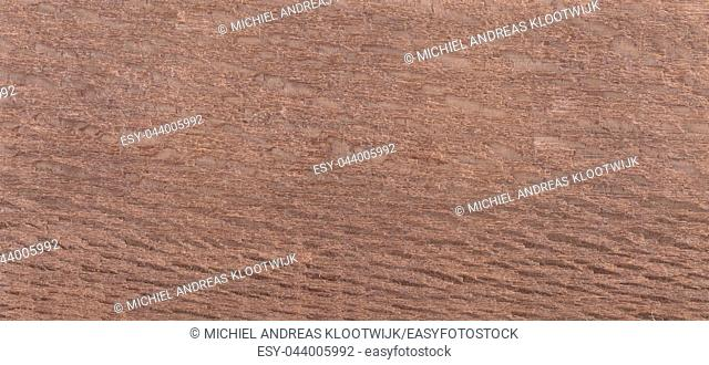 Wood background - Wood from the tropical rainforest - Suriname - Poraqueiba guianensis
