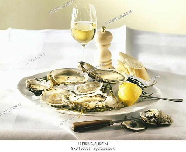 A plate of oysters and lemon 1