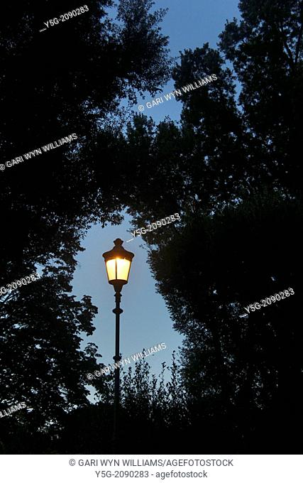 street lamp in woods in countryside
