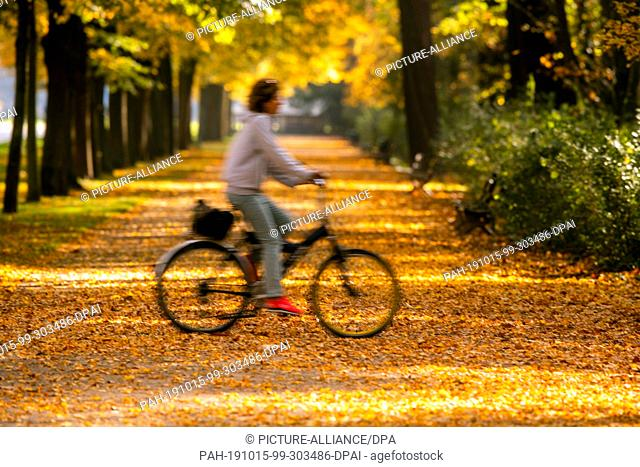 15 October 2019, Saxony, Dresden: A cyclist is out in the Great Garden (long exposure). Sunny and with temperatures around twenty degrees the autumn weather in...