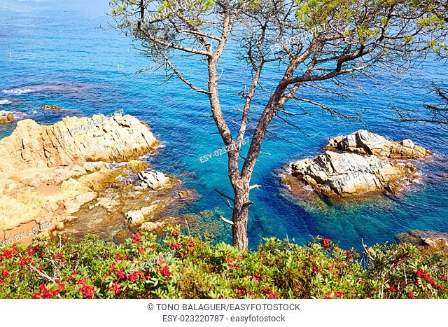 Costa Brava beach Lloret de Mar in Catalonia at Spain