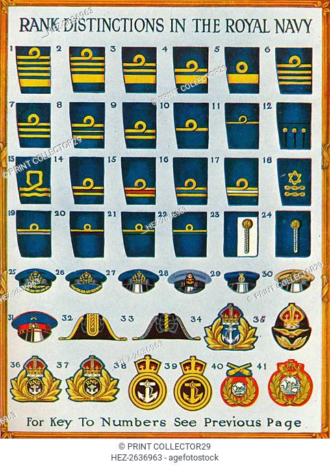 Rank distinctions in the Royal Navy, c1919 (1919). Artist: Unknown