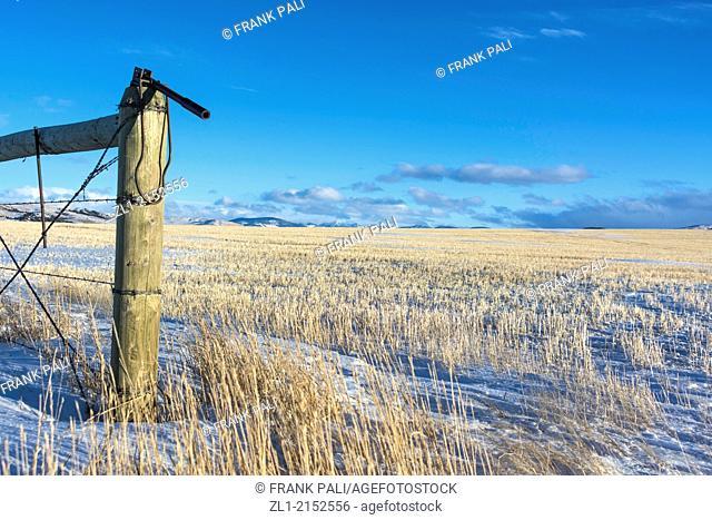 Montana winter. Bozeman, Montana, USA