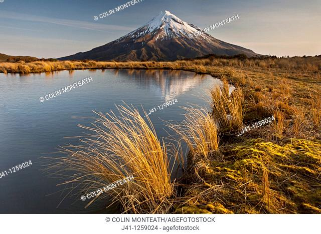 Mt Egmont / Taranaki, late afternoon reflection in small tarn set among tussock slopes of Pouakai range, Taranaki