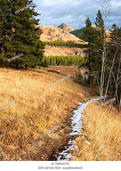 Cat Creek hills in Kananaskis, Alberta, Canada