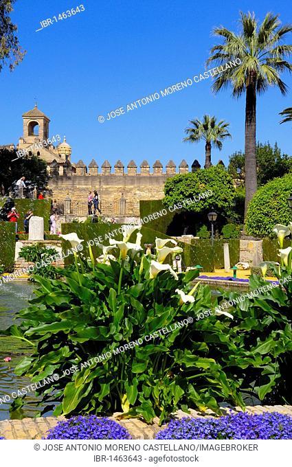 The gardens of Alcázar de los Reyes Cristianos, Alcazar of Catholic Kings, Cordoba, Andalusia, Spain, Europe