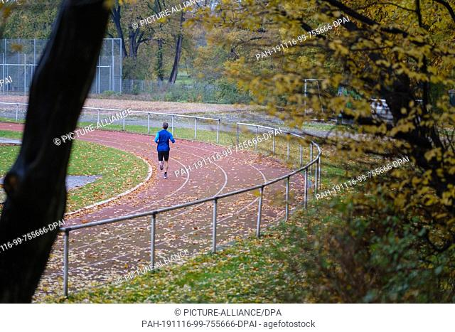 16 November 2019, Lower Saxony, Hanover: A jogger runs over a leafy tartan track. For the coming week meteorologists predict changeable weather