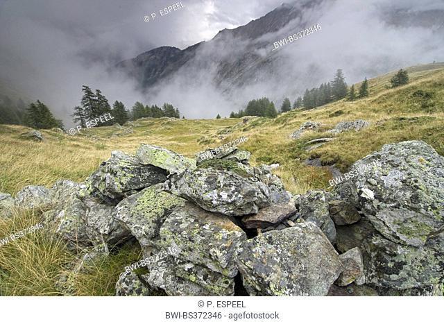Rocky mountain slope, Italy, Piedmont, Gran Paradiso National Park