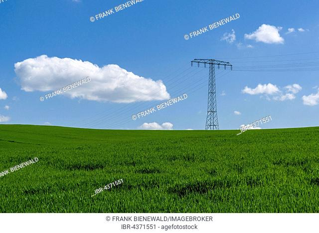 Agricultural landscape with overhead powerlines, green fields and cloudy blue sky, Cunnersdorf, Saxony, Germany
