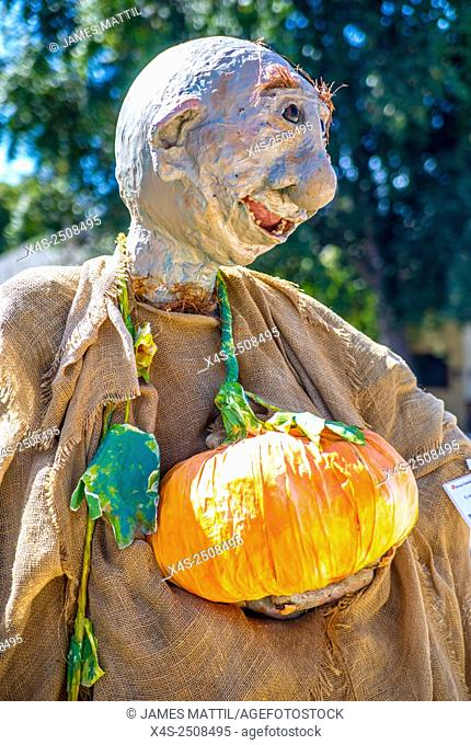 A homemade scarecrow depicting story book character Yoda at a Halloween festival
