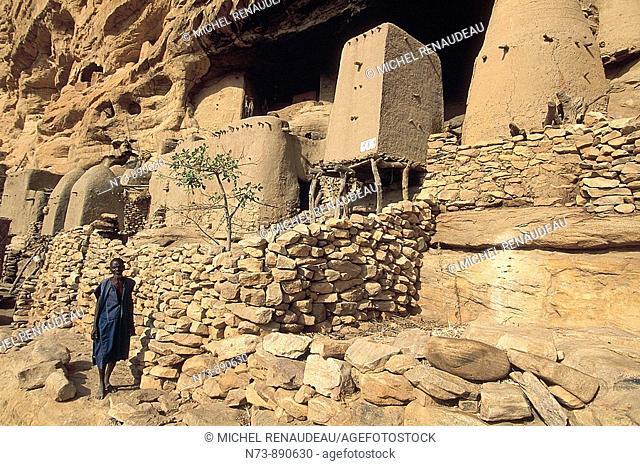 Granaries at Ireli village, Bandiagara Escarpment, Dogon Country, Mali