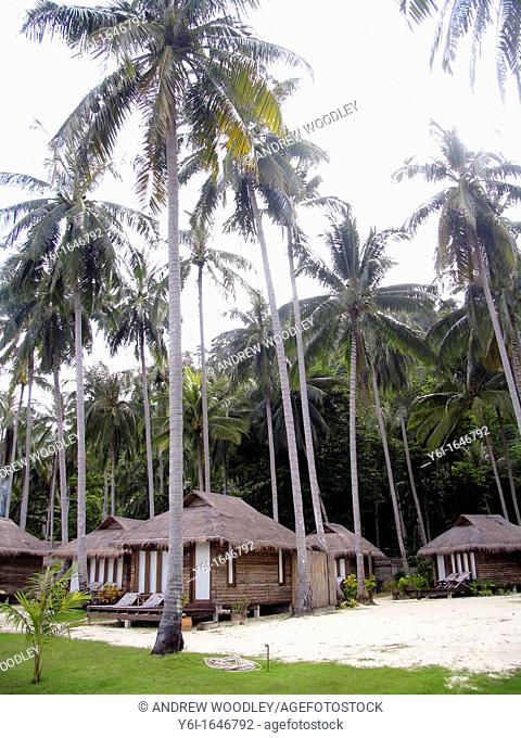 Thatch bungalows coconut grove CoCo Cottage Resort Ko Ngai island Thailand