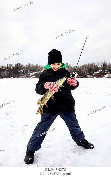 A young boy catching a Northern Pike while ice fishing on Lake Wabamum during a winter family outing; Wabamun, Alberta, Canada