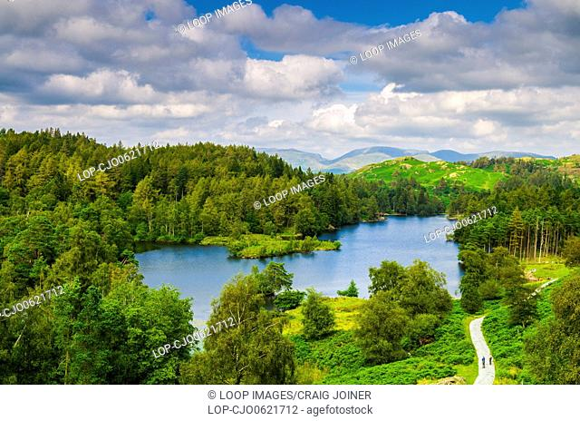 Tarn Hows surrounded by forest in the English Lake District