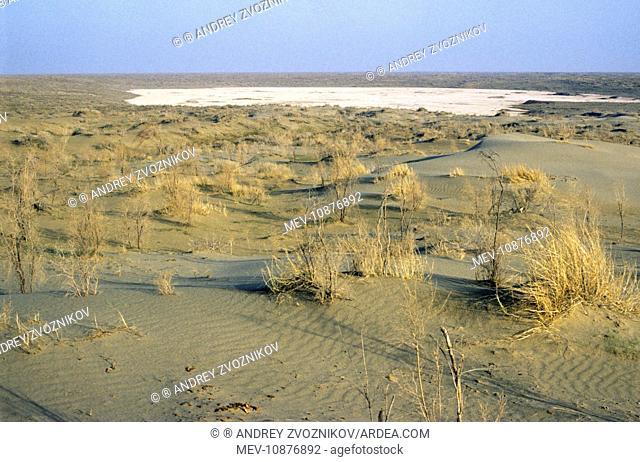 Dry salt marsh - surrounded by sand dunes - a typical scene in Central Karakum desert. Turkmenistan - former CIS - Spring - April
