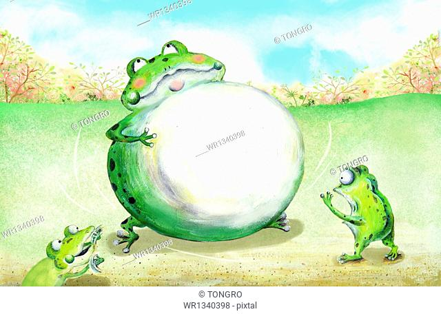 a frog round as a ball