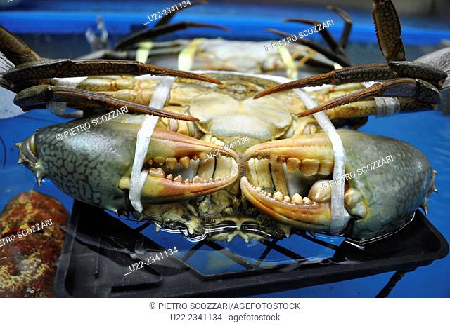 Naha, Okinawa, Japan: alive crabs sold at Makishi Market