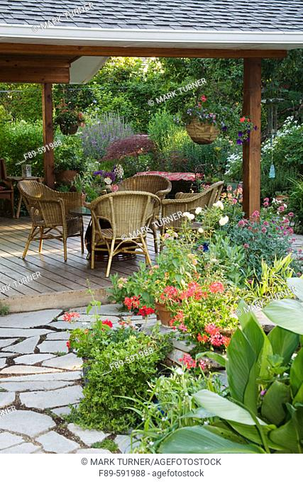 Wicker chairs and  low table on covered wooden patio. Red Balcony Ivy Geraniums, Canna foliage [Pelargonium 'Red Balcony'; Canna cv.]. Heath, Medford