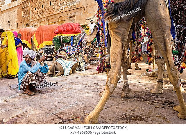 Gangaur festival,camels inside the Fort,Jaisalmer, Rajasthan, India
