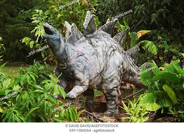 Stegosaurus dinosaur from the late Jurassic period  Goes to a length of 29 feet and weighted 2 to 3 tons  Was a plant eater  Belonged to the Major group:...