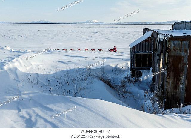 DeeDee Jonrowe runs past abandoned buildings of Old Shaktoolik a few miles before the Shaktoolik checkpoint during Iditarod 2015