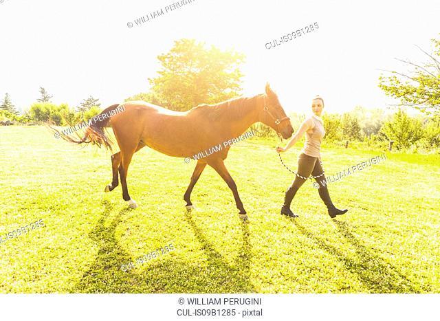 Woman in field walking horse on tether