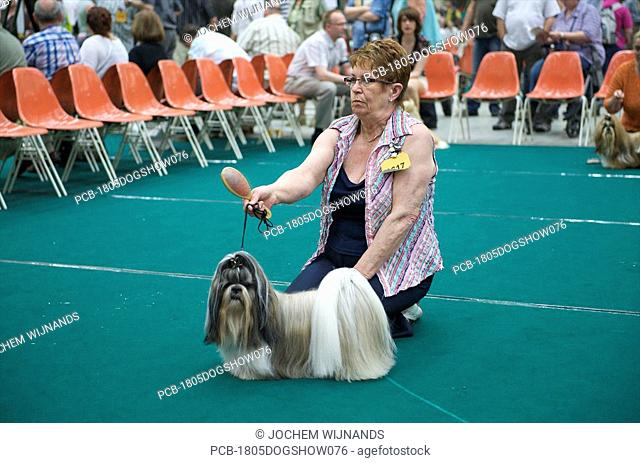 Holland, Arhnem, dogshow