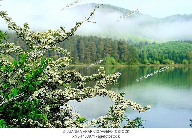 Urrunaga Reservoir in the town of Legutiano, Alava, Basque Country, Spain