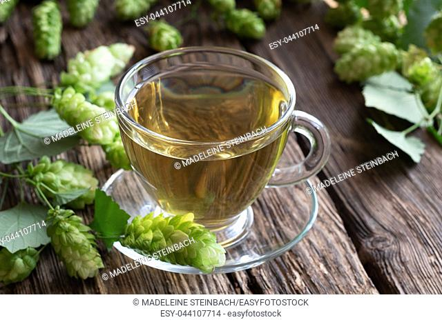 A cup of herbal tea with wild hops
