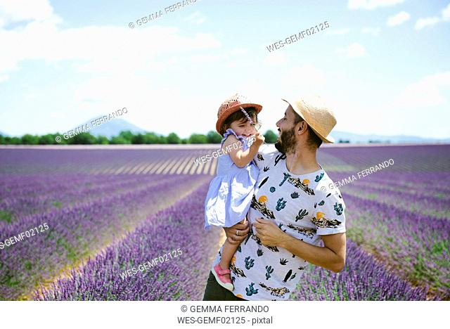 France, Provence, Valensole plateau, happy father and daughter in lavender fields in the summer